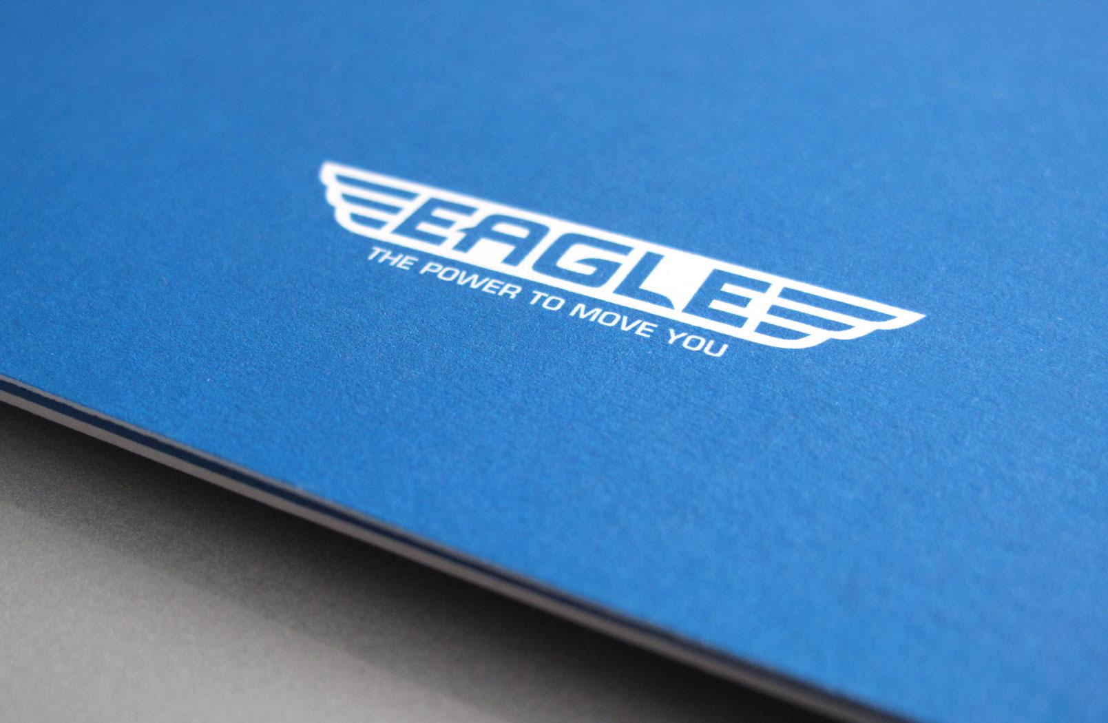 Eagle-Image-3